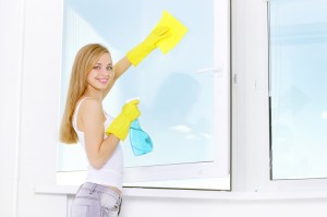 window cleaning Kansas City do it yourself