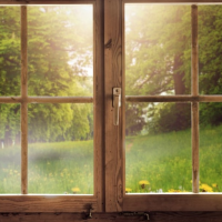 Preparing Your Residential and Commercial Windows For Spring