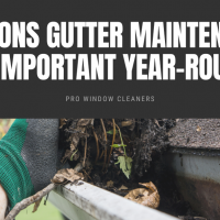 Reasons Gutter Maintenance is Important Year-Round