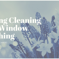 Spring Cleaning and Window Washing
