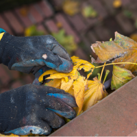 Benefits of Cleaning Gutters for All Seasons